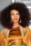 Esperanza+Spalding+Long+Hairstyles+Afro+vA8Nbvya5Gcl