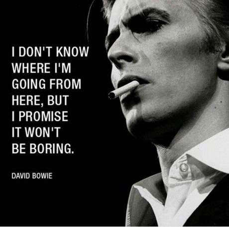 ripbowie